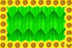 Sunflower frame on leaf Stock Photos