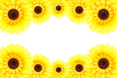 Sunflower frame Royalty Free Stock Photo