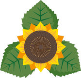 Sunflower. Geometrical sunflower with three leaves Royalty Free Stock Photography