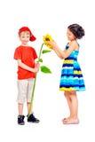 Sunflower gift Stock Image