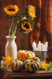 Sunflower & Gourds Still Life Royalty Free Stock Photography