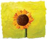 Sunflower on green background Stock Image