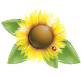 Sunflower and green leaves isolated on white Stock Photos