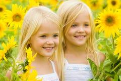 Sunflower happiness stock image