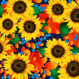 Sunflower harvest. Sunflowers with blueberries and harvest colored floral Stock Images