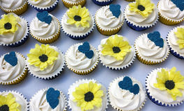Sunflower and hearts cupcakes. Mixed box of yellow sunflower cupcakes, could also be gerberas or daisys, and some cupcakes with royal blue or navy hearts. Made stock photography