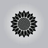 Sunflower icon. On a grey background Royalty Free Stock Photography