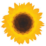 Sunflower icon with triangular polygons Stock Photos