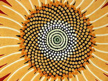 Sunflower illustration. An illustration of a colorful sunflower Stock Photo