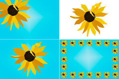 Sunflower Illustration Set royalty free stock photography