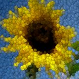 Sunflower image balls generated hires texture. Or background stock illustration
