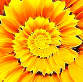 Sunflower infinity spiral abstract background. Royalty Free Stock Images