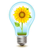 Sunflower inside. Realistic vector eco-friendly bulb with plant inside Stock Images