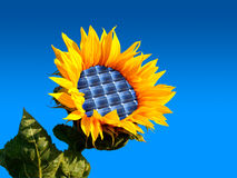 Sunflower. With integration of a photovoltaic panel Stock Photos
