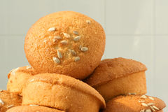 Sunflower kernel cake Stock Image