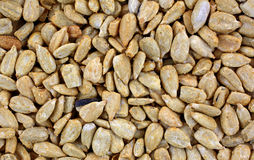 Sunflower Kernels Close View Stock Photos