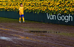 Sunflower Labyrint 2015 Van Gogh museum Royalty Free Stock Photos