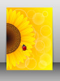 Sunflower and ladybird on yellow background. Royalty Free Stock Photography