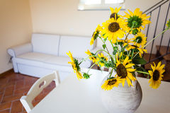 Sunflower lounge Stock Photography