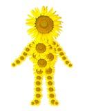 Sunflower man  isolated on white Stock Photo