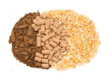 Sunflower meal, maize and bran background. Food for horses Royalty Free Stock Photo