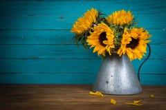 Sunflower in metal vase stock photos