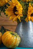 Sunflower in metal vase Royalty Free Stock Images