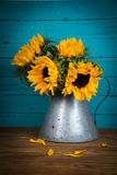 Sunflower in metal vase Stock Photo
