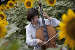 Sunflower Music Stock Images