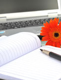 Sunflower and notebook Stock Images