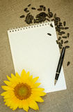 Sunflower and notebook Stock Photos