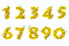 Sunflower numbers 1-9 isolated on white background Stock Photography