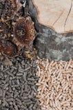 Sunflower and oak pellets Stock Photos
