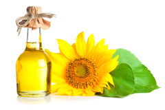Sunflower and oil Royalty Free Stock Photography