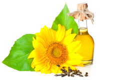 Sunflower and oil Stock Image