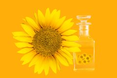 Sunflower oil. Bottle of sunflower oil and sunflower on orange background Royalty Free Stock Photography