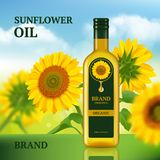 Sunflower oil. Advertizing design template for magazine chef liquid product in bottle vector background realistic. Oil bottle sunflower, organic cooking vector illustration