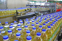 Sunflower oil. In the bottle moving on production line Royalty Free Stock Photos
