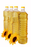 Sunflower oil in bottles. C artificial colors of sunflower on a white background Royalty Free Stock Photography