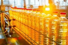 Sunflower oil. Factory line of production and filling of refined oil from sunflower seeds. Factory conveyor of food industry.  Royalty Free Stock Photos
