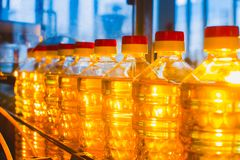 Sunflower oil. Factory line of production and filling of refined oil from sunflower seeds. Factory conveyor of food industry.  Stock Images