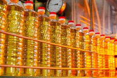 Sunflower oil. Factory line of production and filling of refined oil from sunflower seeds. Factory conveyor of food industry.  Stock Image