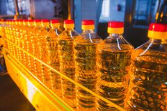 Sunflower oil. Factory line of production and filling of refined oil from sunflower seeds. Factory conveyor of food industry.  Stock Photos