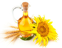 Sunflower oil with flower royalty free stock photos