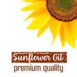Sunflower oil label. label and text Stock Photo