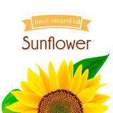 Sunflower oil label Stock Photography