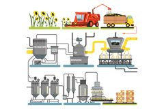 Sunflower oil production process stages, harvesting sunflowers and packing of finished products vector Illustrations royalty free illustration