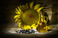 Sunflower oil Stock Image