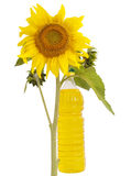 Sunflower oil and sunflower Royalty Free Stock Photos