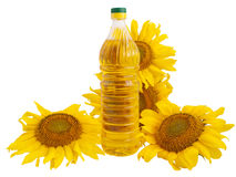 Sunflower oil and sunflower. On white background Royalty Free Stock Photos